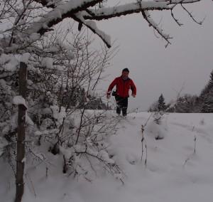 Ca. 40 cm Schnee liegen beim See
