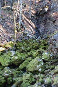 Kein Wasser im Lochbach - normal für diese Jahreszeit