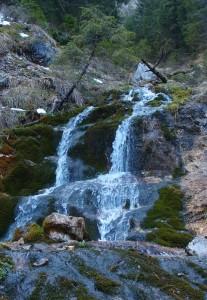 Schon in der Früh - Schmelzwasser im Lechnergraben