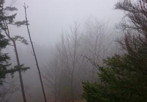 Lunz unter einer dichten Nebeldecke